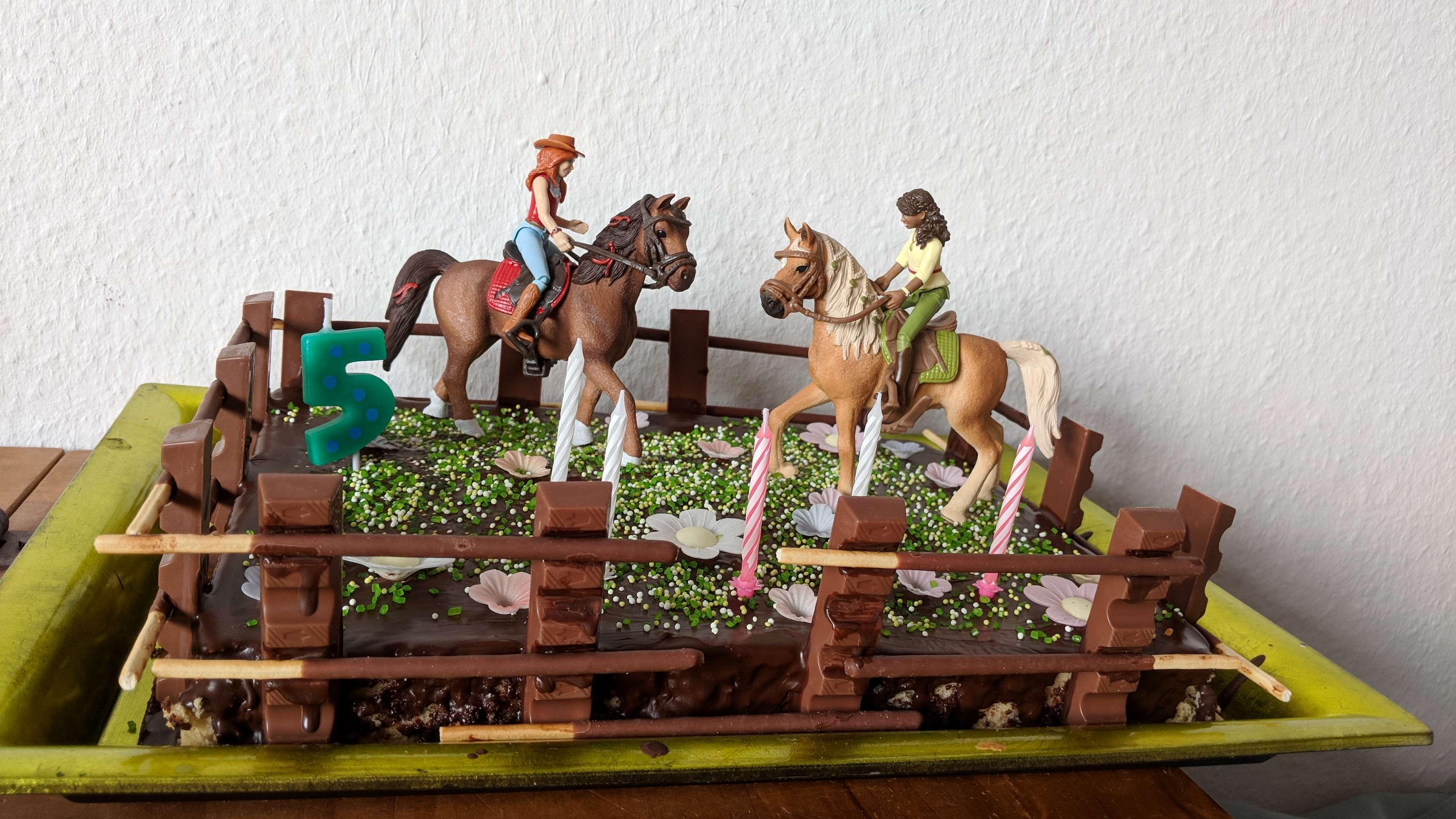 Diy Pferdekuchen Fur Den Pferdegeburtstag Des Chaosmadchens