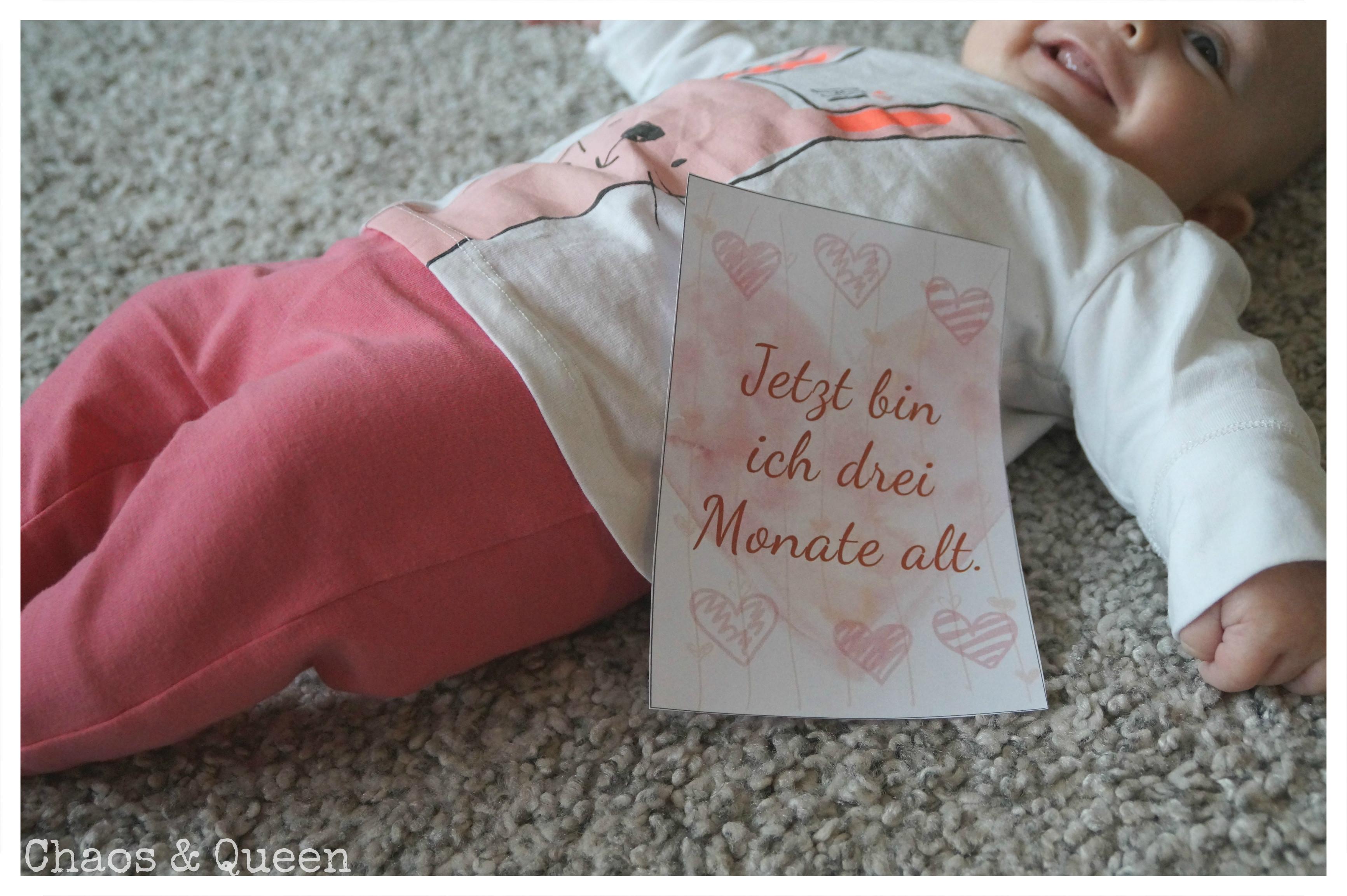 Meilensteinkarten Perfektes Geschenk Zu Schwangerschaft Und Geburt