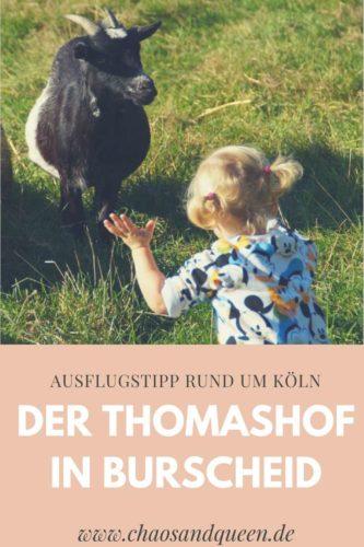 Ausflug rund um Köln Thomashof Burscheid